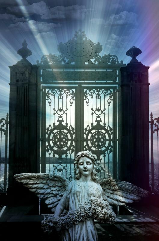 Angel 1802589 1920