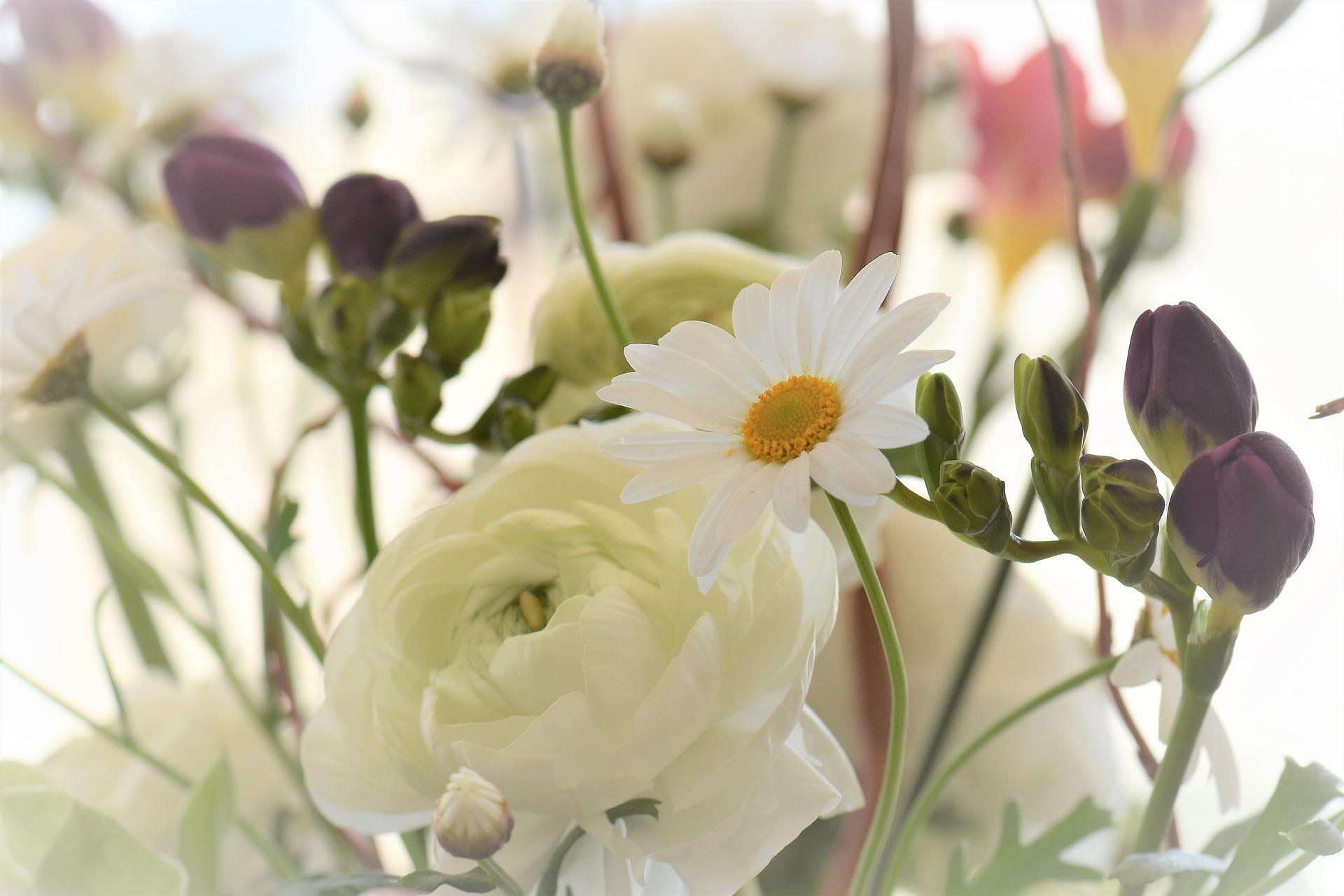 Flower blossom 2117952 1920