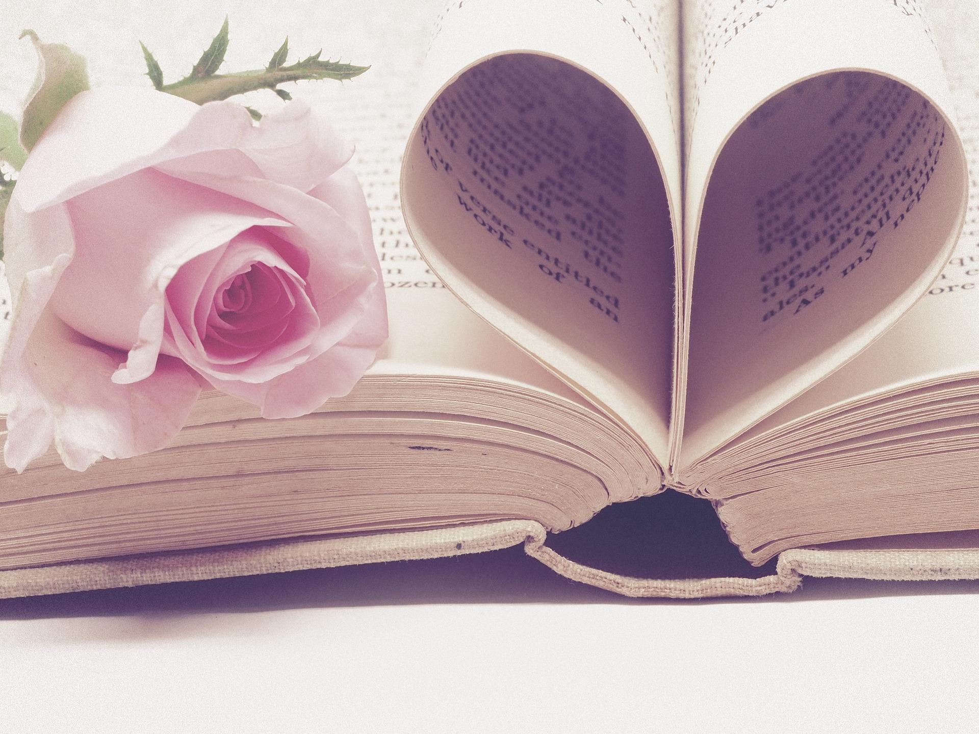 Literature 3060241 1920